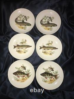 FAB! Antique 13PC Israel Naaman Fish Serving Porcelain Plates Set