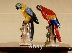 German porcelain parrots bird figurine African Macaw Dresden Karl Ens Volkstedt