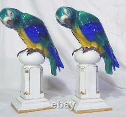 Pr Art Deco German Porcelain Behscherzer Parrot Macaw Figures Blue Green Yellow